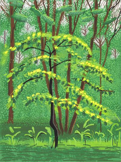 David Hockney, 'The Arrival of Spring in Woldgate, East Yorkshire in 2011 (twenty eleven) - 19 May 2011', 2011