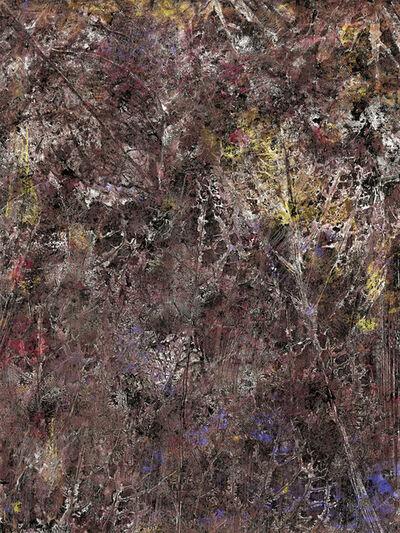 Abelardo Morell, 'Flowers for Lisa #34', 2016