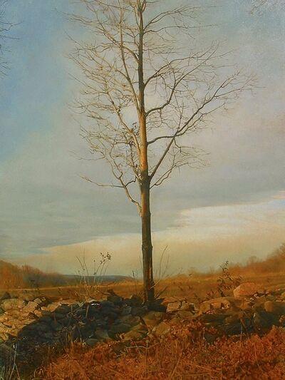 Trey Friedman, 'Trees on a Line #53A, March 2008', 2008