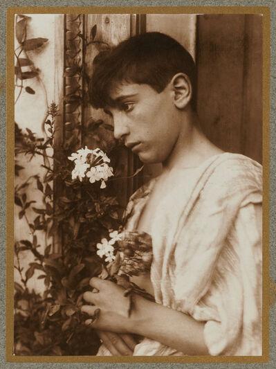 Wilhelm Von Gloeden, 'Sicilian Boy', ca. 1900