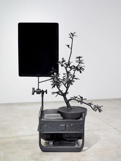 Michael Jones McKean, 'the shade', 2015