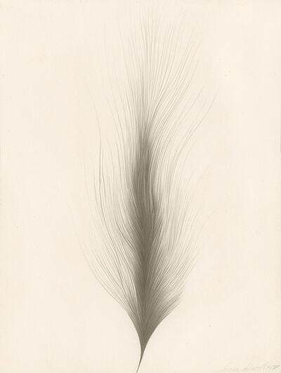 Susan Schwalb, 'Illusion', 1978