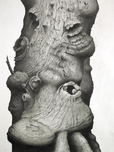 Jim Sullivan, 'Untitled #33 ', 2010