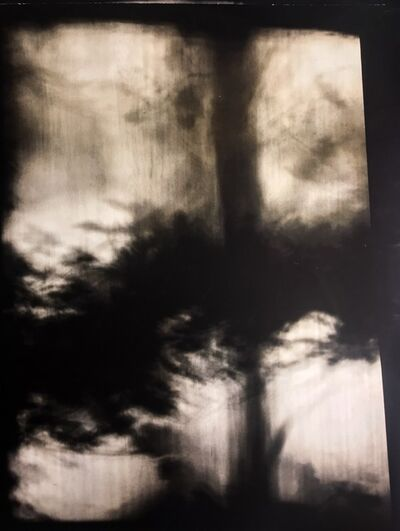 Jared Handelsman, 'Shadow Landscapes IV', 2010