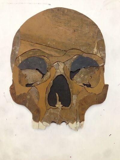 Diederick Kraaijeveld, 'Dark Skull', 2013