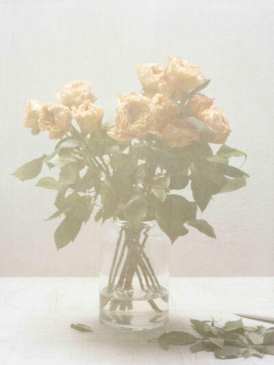 Melanie Schiff, 'Silk, Roses', 2016