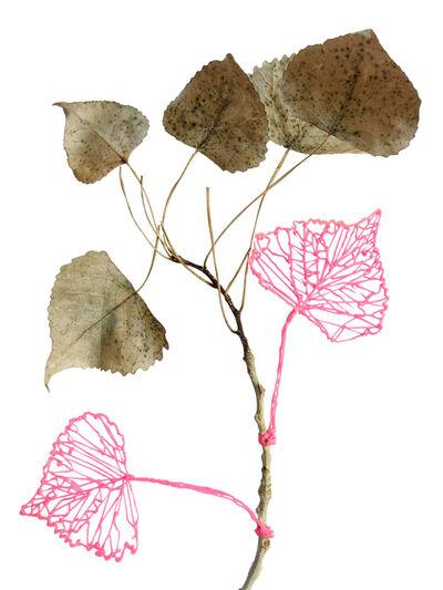 Richelle Gribble, 'Leaves', 2018