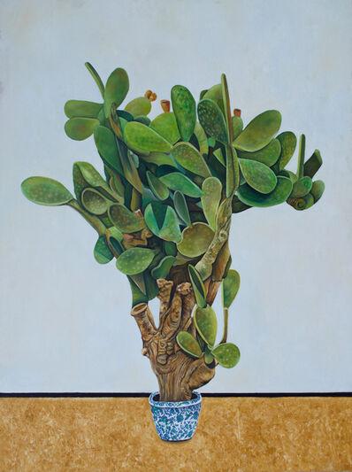 Fouad Agbaria, 'Cactus', 2016