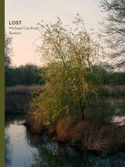 Michael Cardinali, 'LOST Boston', 2018