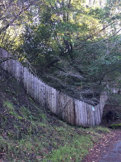 Alice Shaw, 'Untitled (Hill Fence)', 2017