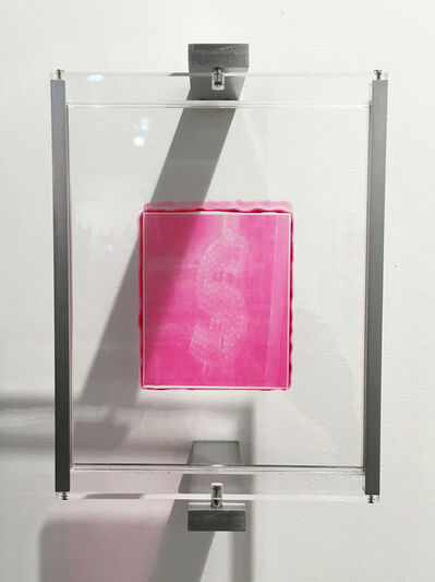 Henry Hudson, 'Woodburytype Print of Study Plate 6 - After party (pink)', 2015