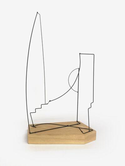 Fitzhugh Karol, 'Wire Landscape V', 2017