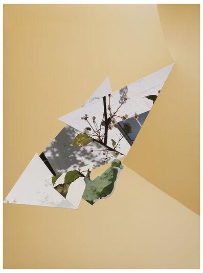 Sandi Haber Fifield, 'BE20_370', 2020
