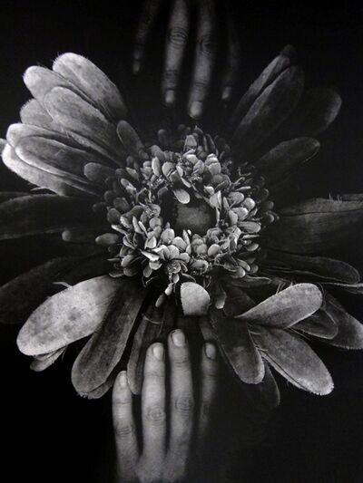 Marie Denis, 'L'herbier estampe', 2019