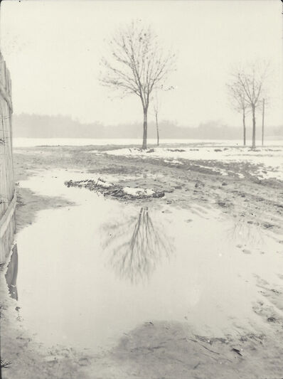 Josef Sudek, 'Tree and Snow', 1920-1929