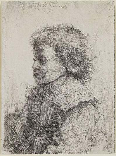 Rembrandt van Rijn, 'Portrait of a Boy in Profile', 1641