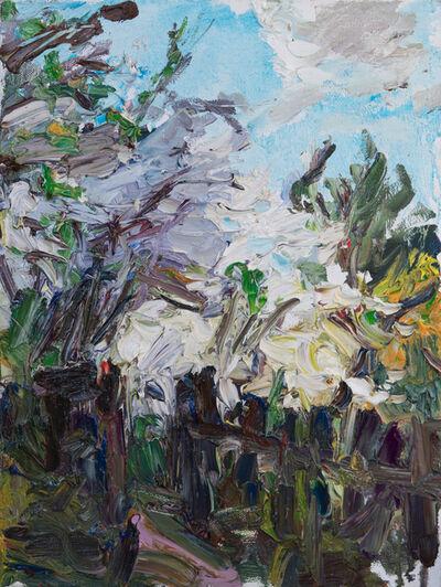 Ulrich Gleiter, 'Blossoming Garden', 2019