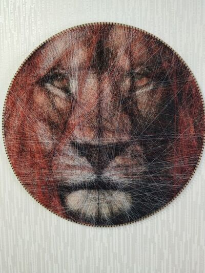 Ani Aba, 'Lion', 2019