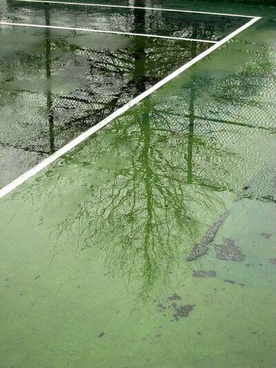Jessica Backhaus, 'greenpoint', 2008
