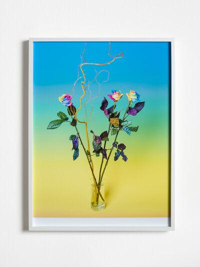 Annette Kelm, 'Bouquet (Birthday)', archival pigment print-framed