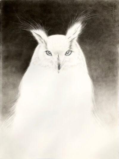 Amy Ross, 'Owl Spirit 3'