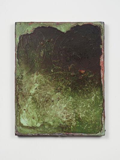 Adam Lovitz, 'Wet Grass', 2016