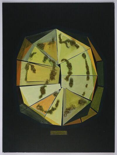 Dolores Zinny & Juan Maidagan, 'La tortuga', 2019