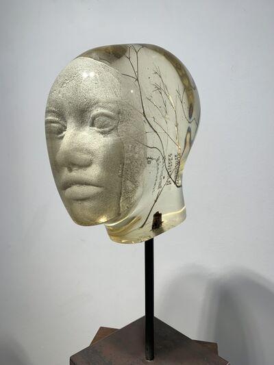Oliver Czarnetta, 'Spectrum Model', 2015