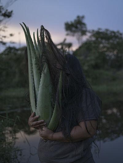 Yann Gross & Arguiñe Escandón, 'Aloe Vera', 2019