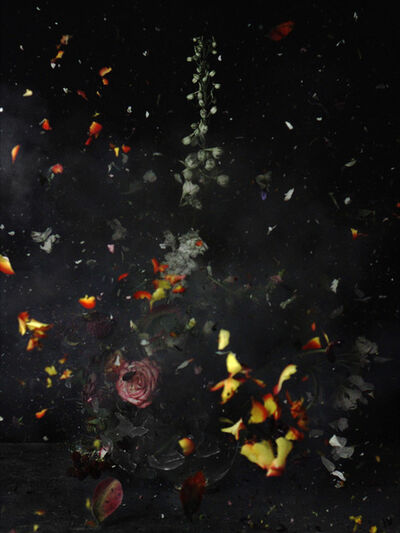 Ori Gersht, 'Time After Time, Untitled 12', 2006