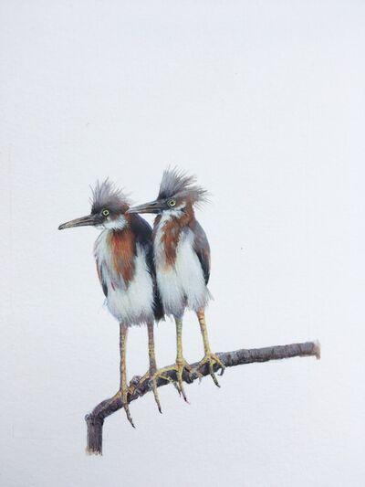 Dina Brodsky, 'Tricolored Heron', 2018