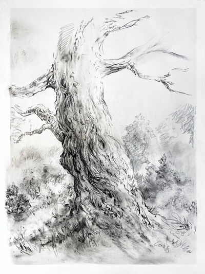 Rick Shaefer, 'Tree Study #3', 2021