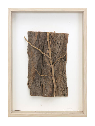 herman de vries, 'No Title', 2011