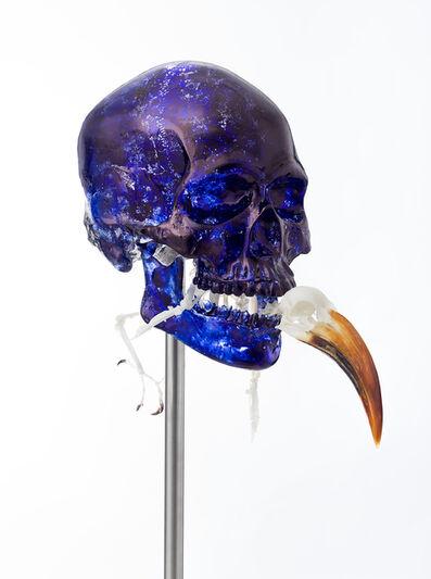 Jan Fabre, 'Skull with Von der Decken's Hornbill', 2018