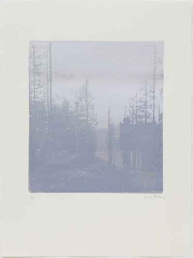 Paul Winstanley, 'Landscape 44', 2010