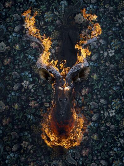 Christian Houge, 'Kudu', 2018