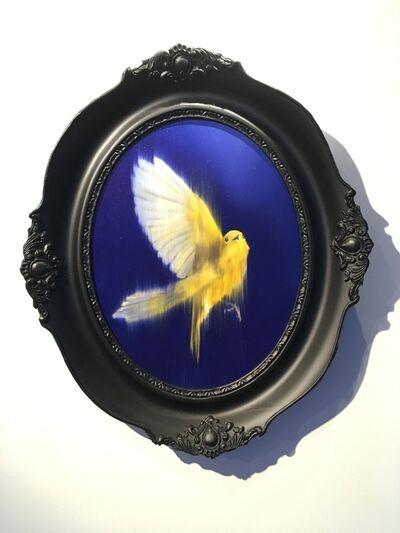 Axel Rios, 'Canary, Fuga', 2018