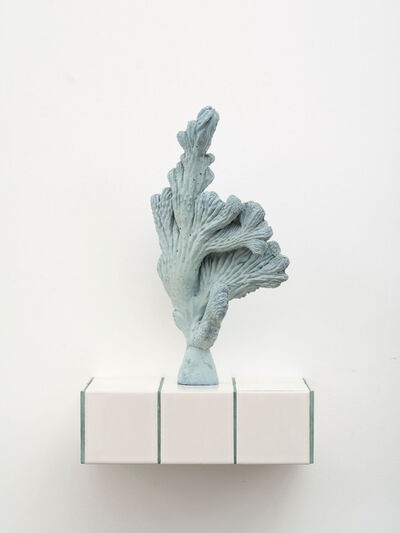 Zhang Ruyi 張如怡, 'Individual Plant—13', 2018