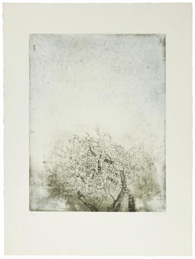 Zoran Antonio Mušič, 'Motif végétal', 1973