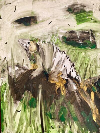 Katarina Janeckova, 'Iguana from Corn Islands', 2016