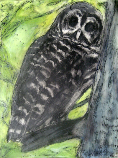 Marcie Wolf-Hubbard, 'Owl Who Visits'