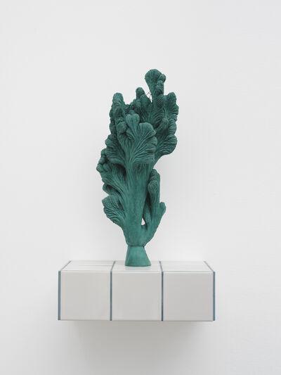 Zhang Ruyi 張如怡, 'Individual Plant-24', 2019