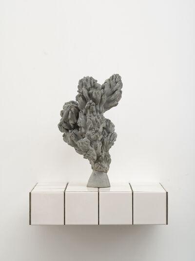 Zhang Ruyi 張如怡, 'Individual Plant–12', 2018