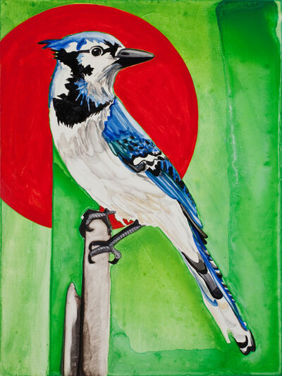 Annika Connor, 'Blue Jay', 2012