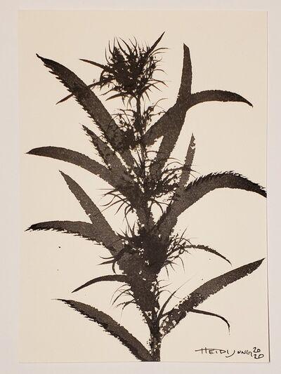 Heidi Jung, 'Ink Study #1', 2020