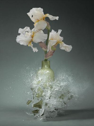 Martin Klimas, 'Iris (Schwerlilie) ', 2012