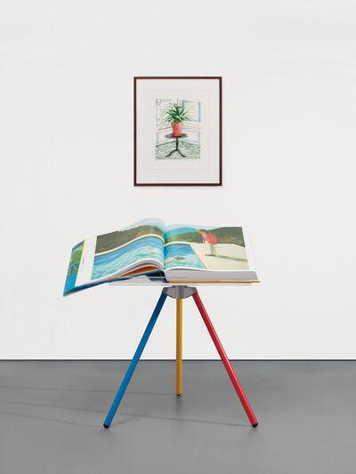 David Hockney, 'A Bigger Book, Art Edition C', 2010-2016