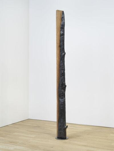 Oscar Tuazon, 'Oil City (Douglas fir)', 2021