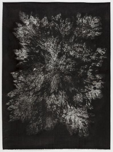 Alexander Lee, 'Manava I', 2013