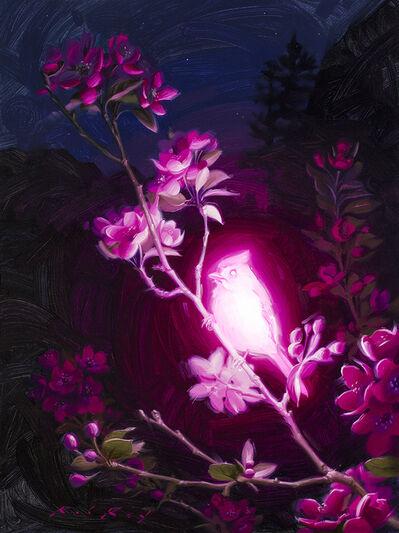 Rob Rey, 'Bioluminescence: Altruism', 2020
